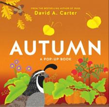 Autumn: A Pop-Up Book By David A. Carter